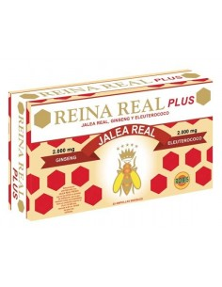 reina real plus 20 amp 10ml